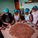 Ghana Is No More Selling Cocoa to Switzerland